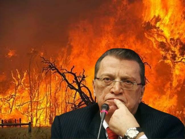 «Εμείς κάψαμε τα ελληνικά δάση»