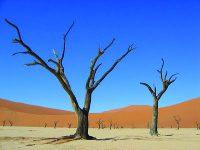 Η αβλαβής οικολογία και η επιβλαβής ελαφρότητα κάποιων αριστερών