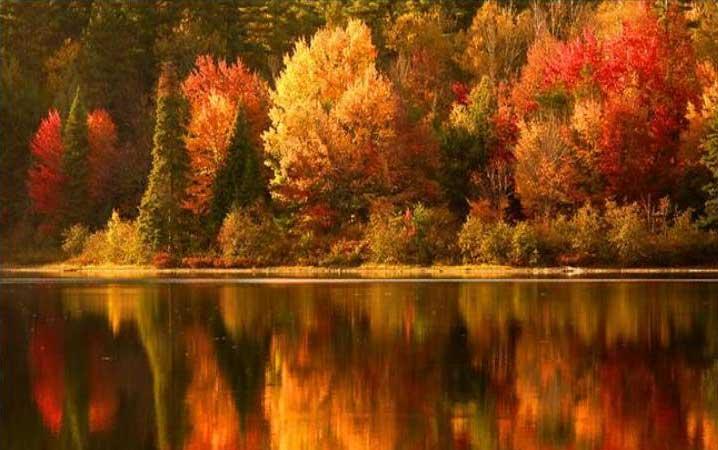 Οκτώβριος: Τι μας προσφέρει η Φύση αυτόν τον μήνα