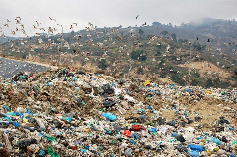 Μαθητευόμενοι μάγοι … και στα σκουπίδια!