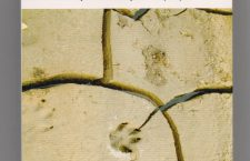 Βιβλιοπαρουσίαση: Υπό την παπαδιαμαντικήν δρυν, του Λάκη Προγκίδη (Θεσ/κη – 22/6/17)