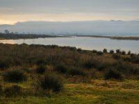 Η λίμνη Κορώνεια πεθαίνει από ανεπάρκεια της γραφειοκρατίας